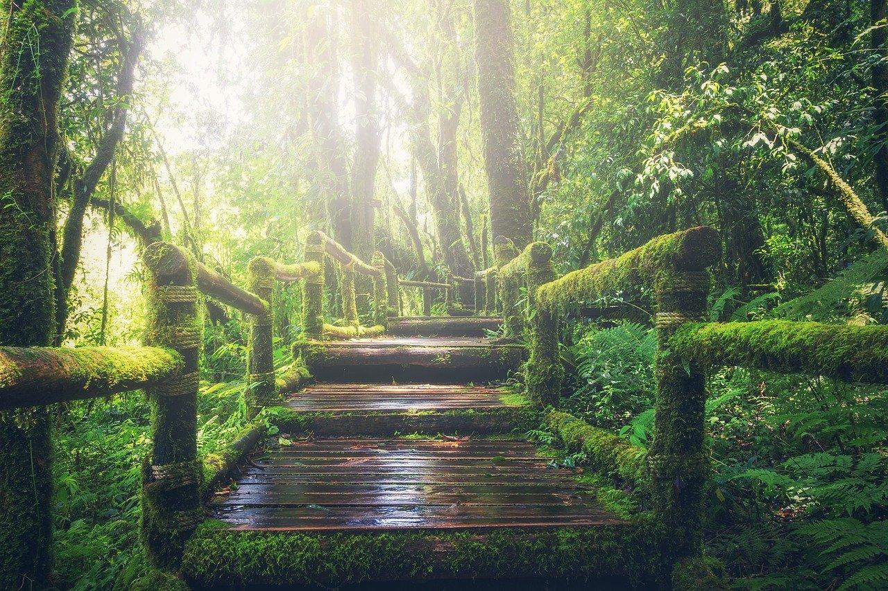 Oroscopo Internazionale: Rob Brezny delinea un nuovo sentiero