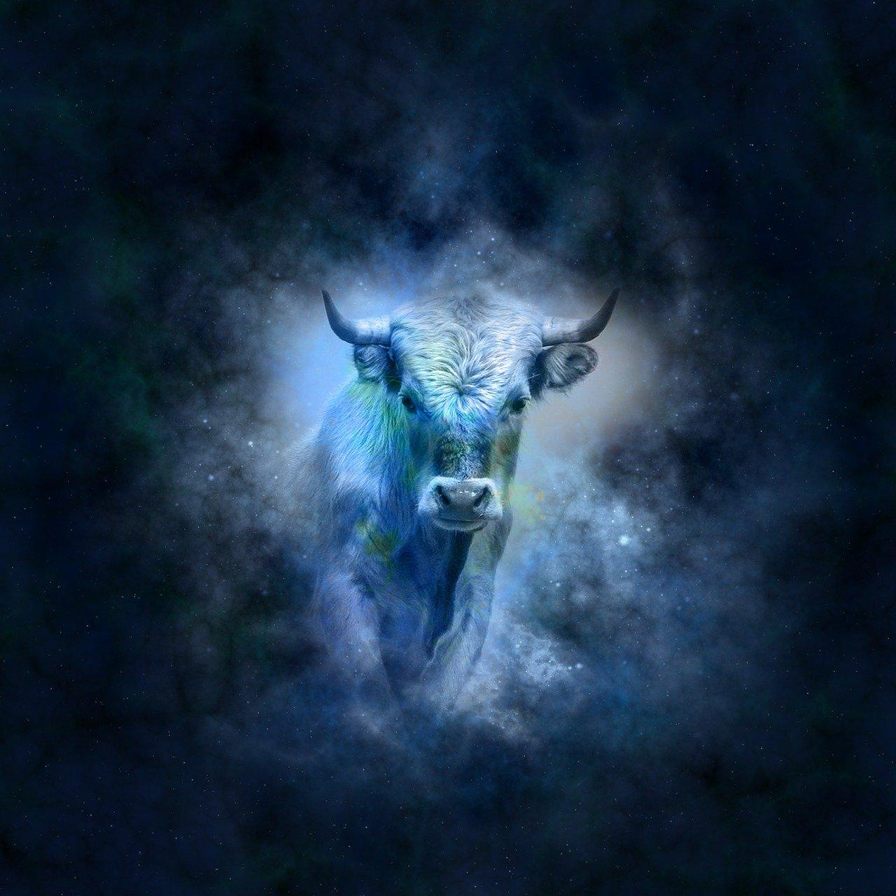 Affinità di coppia Toro e Ariete, l'amore all'ultimo scontro