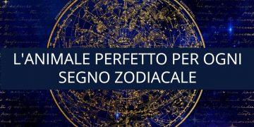 L'animale perfetto per ogni segno zodiacale
